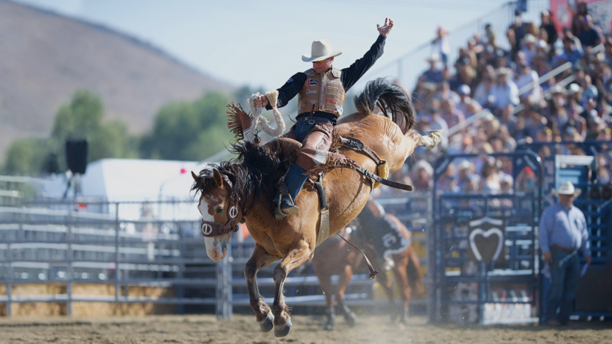 Public Welcome 19th Annual Rancho Mission Viejo Rodeo